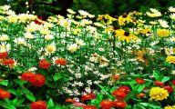 Free Wallpaper Flowers And Garden 24 Design Ideas