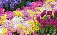 Free Wallpaper Flowers And Garden 3 Arrangement