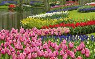 Free Wallpaper Flowers And Garden 30 Decor Ideas