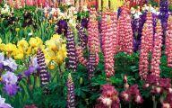 Free Wallpaper Flowers And Garden 8 Design Ideas