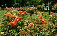 Garden Design Ideas Pinterest  11 Architecture