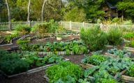 Garden Ideas Vegetable  13 Decoration Idea