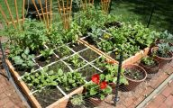 Garden Ideas Vegetable  2 Designs