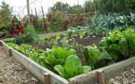Garden Ideas Vegetable  35 Decor Ideas