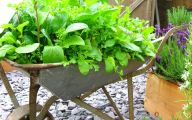 Garden Ideas Vegetable  36 Home Ideas