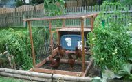Garden Ideas Vegetable  7 Inspiration