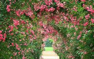 Garden Pictures For Background 8 Decoration Idea