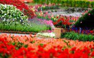 Garden Wallpaper Hd 24 Home Ideas