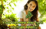 Cool Garden Ideas 25 Decoration Inspiration