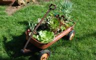 Cool Garden Ideas 29 Picture