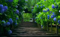 Garden Wallpaper For Desktop  4 Decoration Inspiration