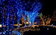 Big Exterior Christmas Lights  21 Picture