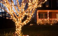 Big Exterior Christmas Lights  28 Architecture