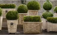 Big Garden Plants  12 Inspiring Design