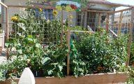 Big Gardens In Small Spaces  5 Arrangement
