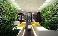 Big Living Room Plants  25 Decor Ideas