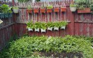 Small Gardens  25 Architecture