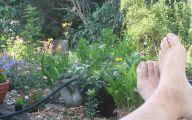 Small Gardens  35 Ideas