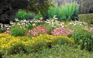 Small Gardens  41 Architecture