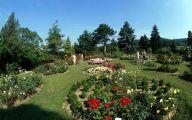Garden Flowers 13 Arrangement