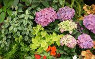 Garden Flowers 18 Decor Ideas