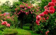 Garden Flowers 19 Home Ideas