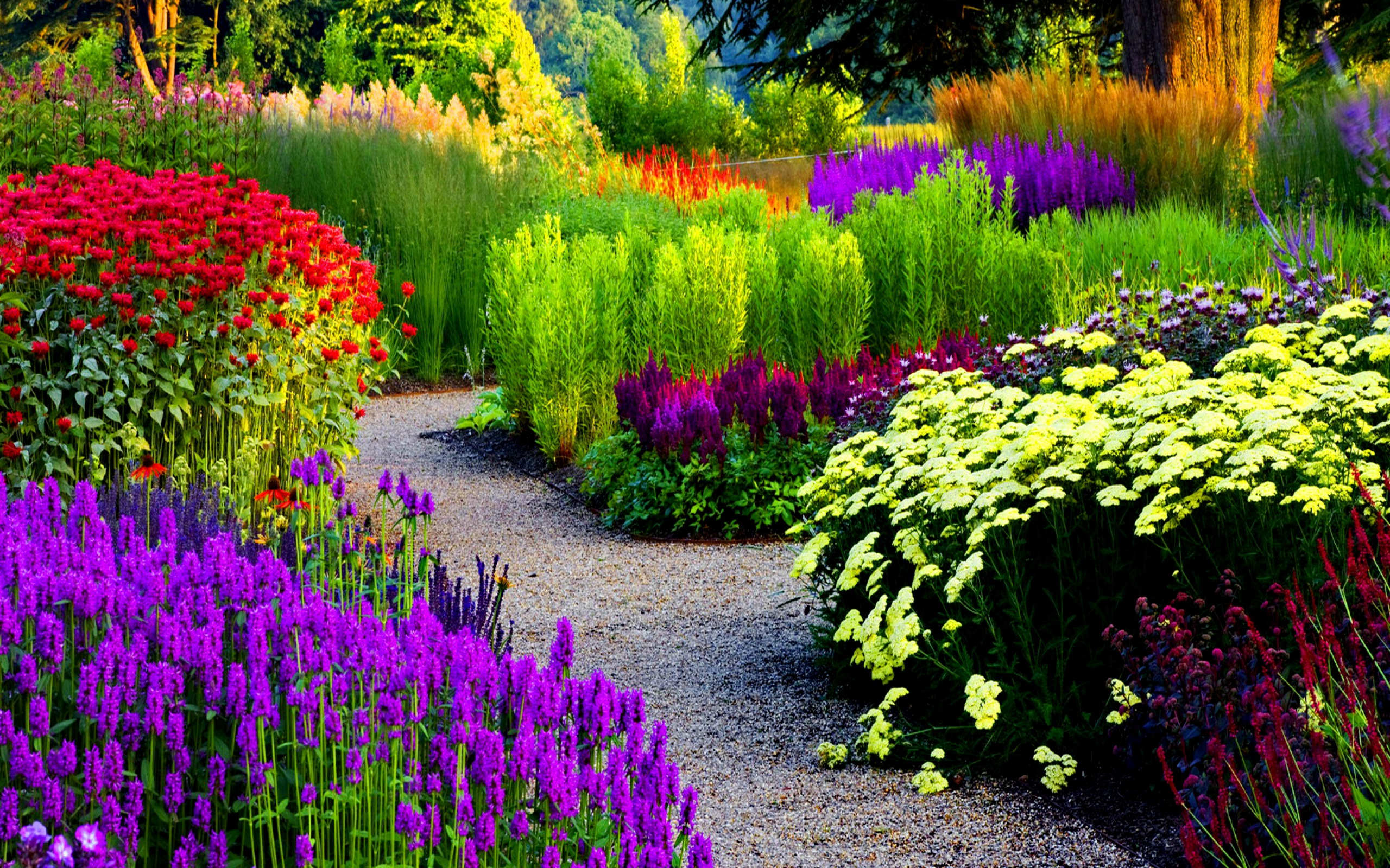 Flower Garden Wallpaper Background garden wallpaper background for computer 17 inspiration