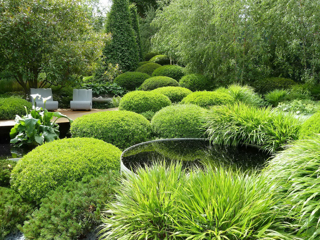 Modern garden 52 design ideas for Water garden landscaping
