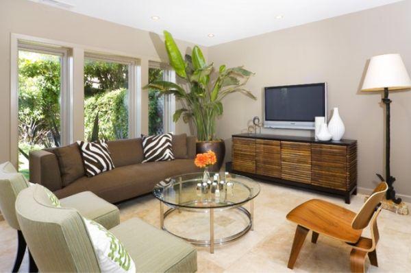 Big Living Room Plants 15 Decoration Inspiration
