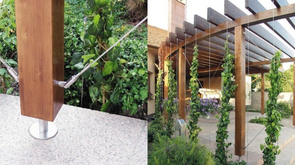 Superior Modern Garden Trellis Renovating Ideas