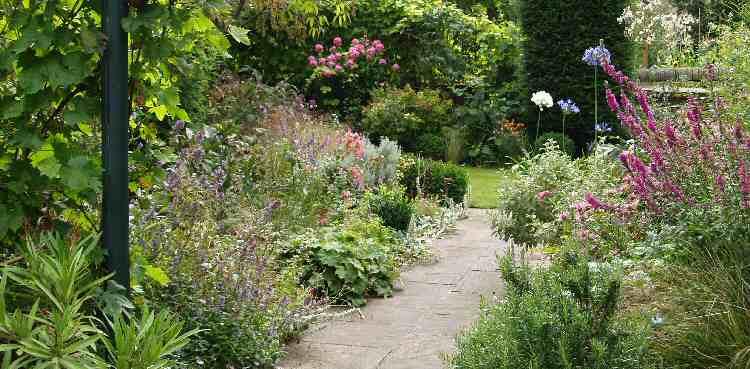 Small Garden Design 5 Architecture Enhancedhomes Org