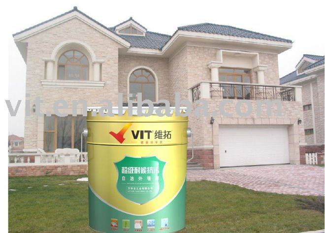 Exceptional Exterior Wall Paint Renovating Ideas