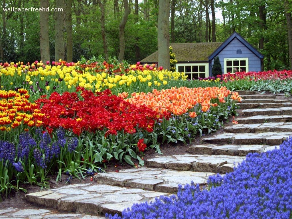 garden flowers re decorating ideas